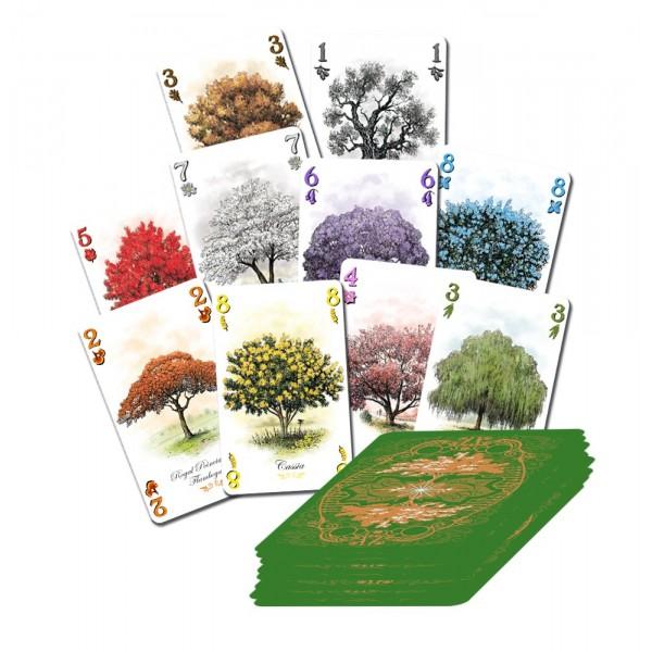 Arboretum cartes
